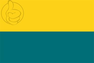 Bandera Narva