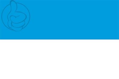 Bandera Viljandi