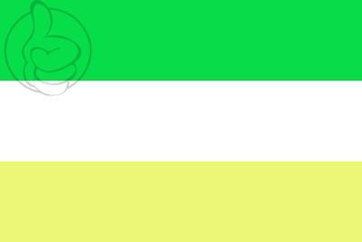 Bandera Chinandega