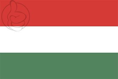 Bandera Esteli