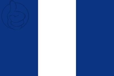 Bandera San Alejo