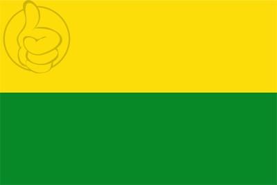 Bandera San Carlos (Costa Rica)