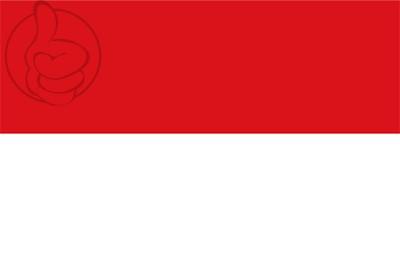 Bandera San Ramón