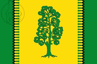 Bandera Dehesas Viejas