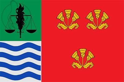 Bandera Soneja