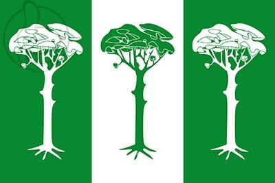Bandera Valdepinillos