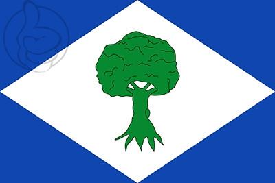 Bandera Noceda del Bierzo