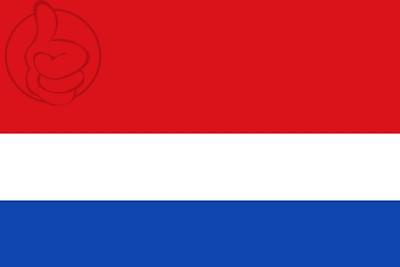 Bandera Oriñón