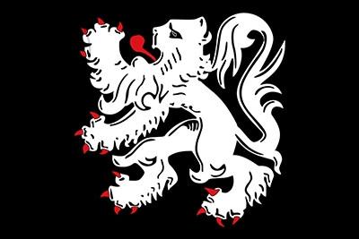 Bandera Binche Personalizada