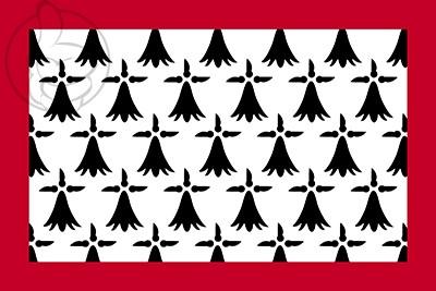 Bandera Lemosín