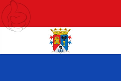 Bandera Valle de Losa
