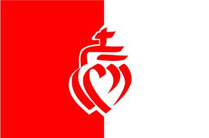 Bandera Vandea