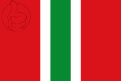 Bandera Valle de Santa Ana