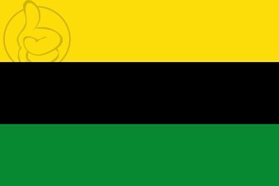 Bandera Villar de Rena