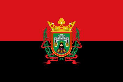 Bandera Ciudad de Burgos Personalizada