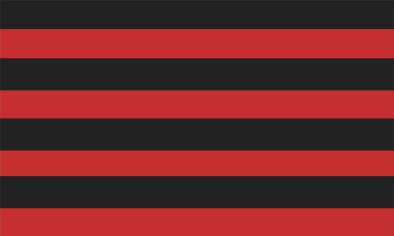 Bandera Reus Deportiu