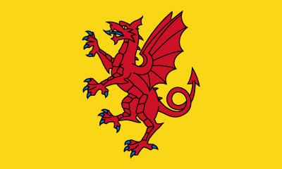 Bandera Somerset