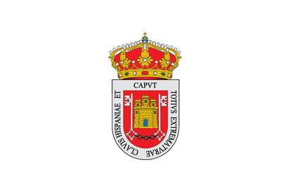 Bandera Alcaraz