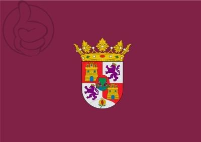 Bandera Puerto Real