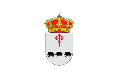 Bandera Calamonte