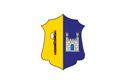 Bandera Consell