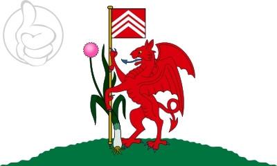 Bandera Cardiff