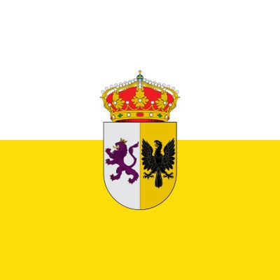 Bandera Presencio
