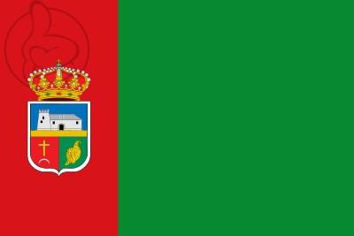 Bandera Vícar