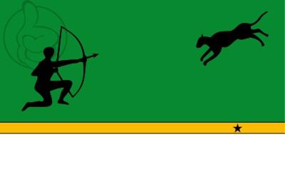 Bandera Amazonas Department (Colombia)