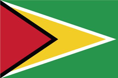 Bandera Guyana