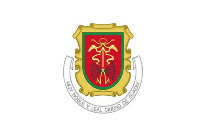 Bandera Guadix