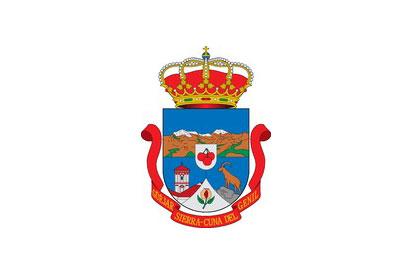 Bandera Güejar Sierra