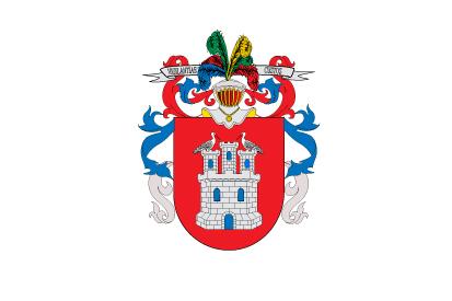 Bandera Irun