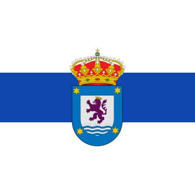 Bandera Sariegos