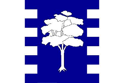 Bandera Algarrobo