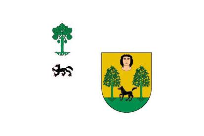 Bandera Basaburua
