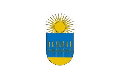 Bandera Cendea de Olza/Oltza Zendea