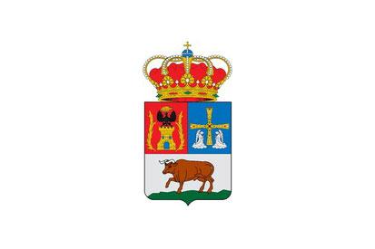 Bandera Boal