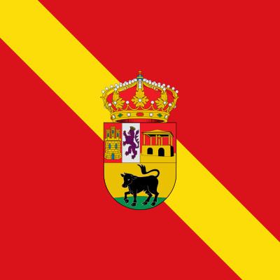 Bandera Becerril de Campos