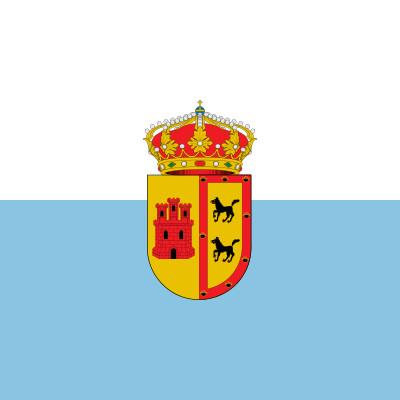 Bandera Castrillo de Don Juan