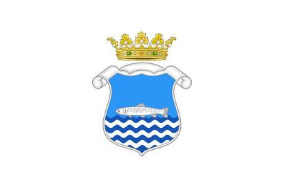 Bandera Riaza