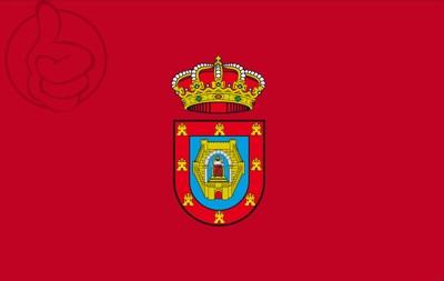 Bandera Ciudad Real