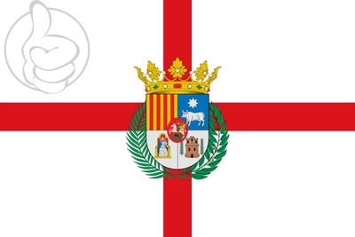 Bandera Provincia de Teruel
