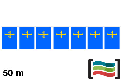 Banderines de Asturias 50m