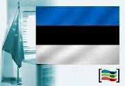 Estonia flag for office