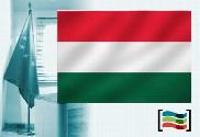 Hungary flag for office