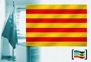 Catalonia flag office