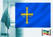 Flag of Asturias for office