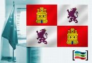 Bandera de Castilla y León para despacho