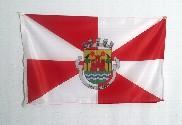 Bandeira do Leiria